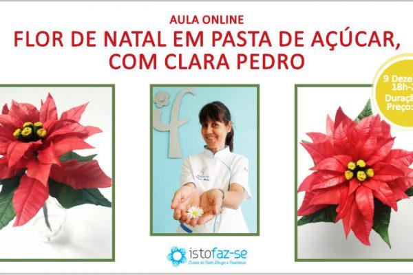 Nova Aula Online – Flor de Natal em Pasta de Açúcar